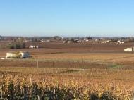 Views across Saint Emilion vineyards