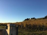 Château Quintus chai on the hill