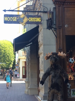 Only in Canada: moose humour