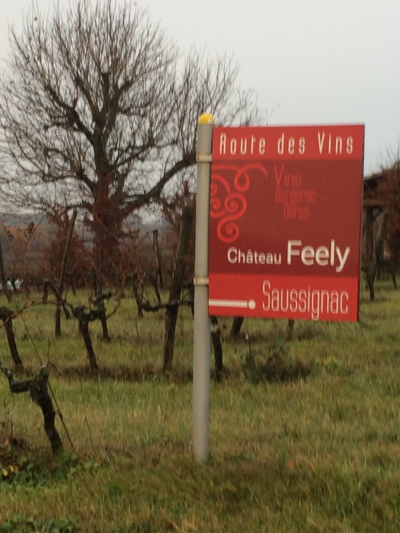 Caro Feely, co-proprietor of Château Feely, an organic wine estate